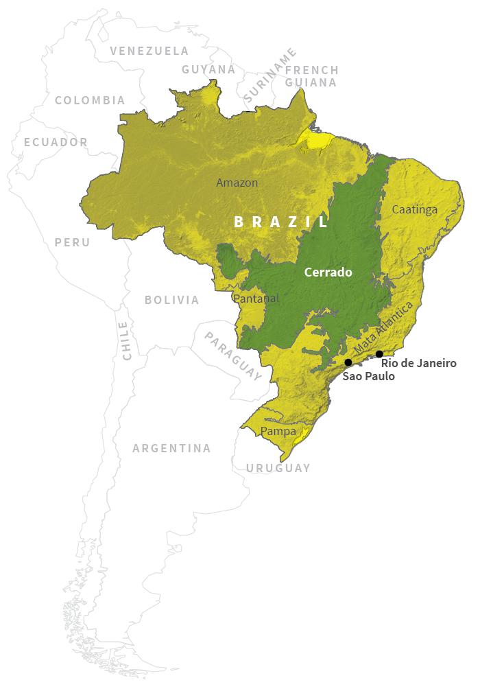 Savanna Biome World Map.Appetite For Destruction Brazil S Soy Boom Devours Tropical Savanna