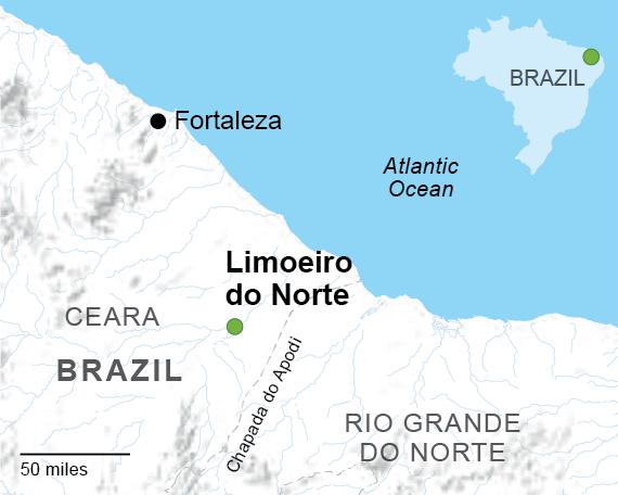Fateful Harvest Why Brazil has a big appetite for risky pesticides