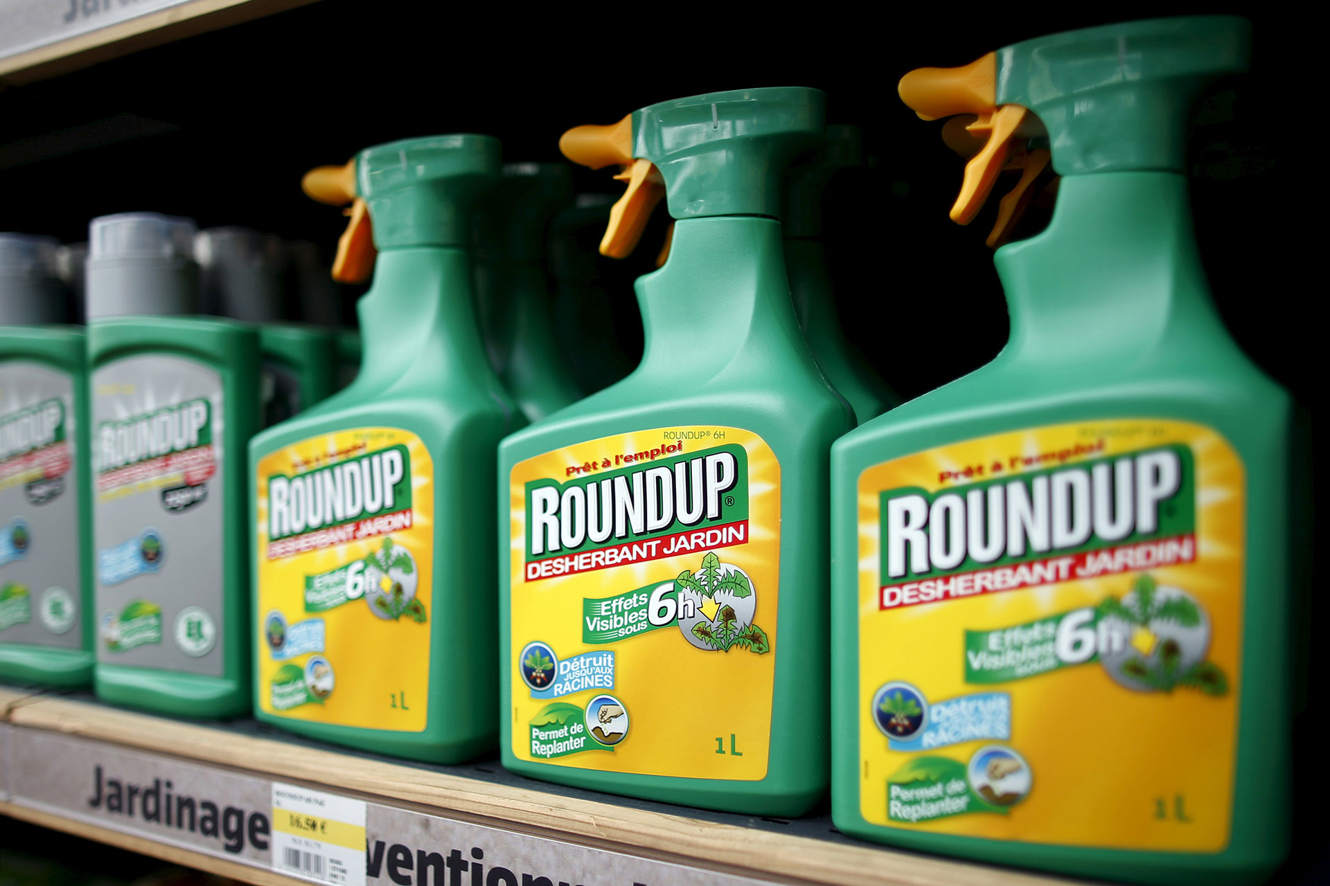 Monsanto's Controversial Weed Killer Roundup Does Not ...
