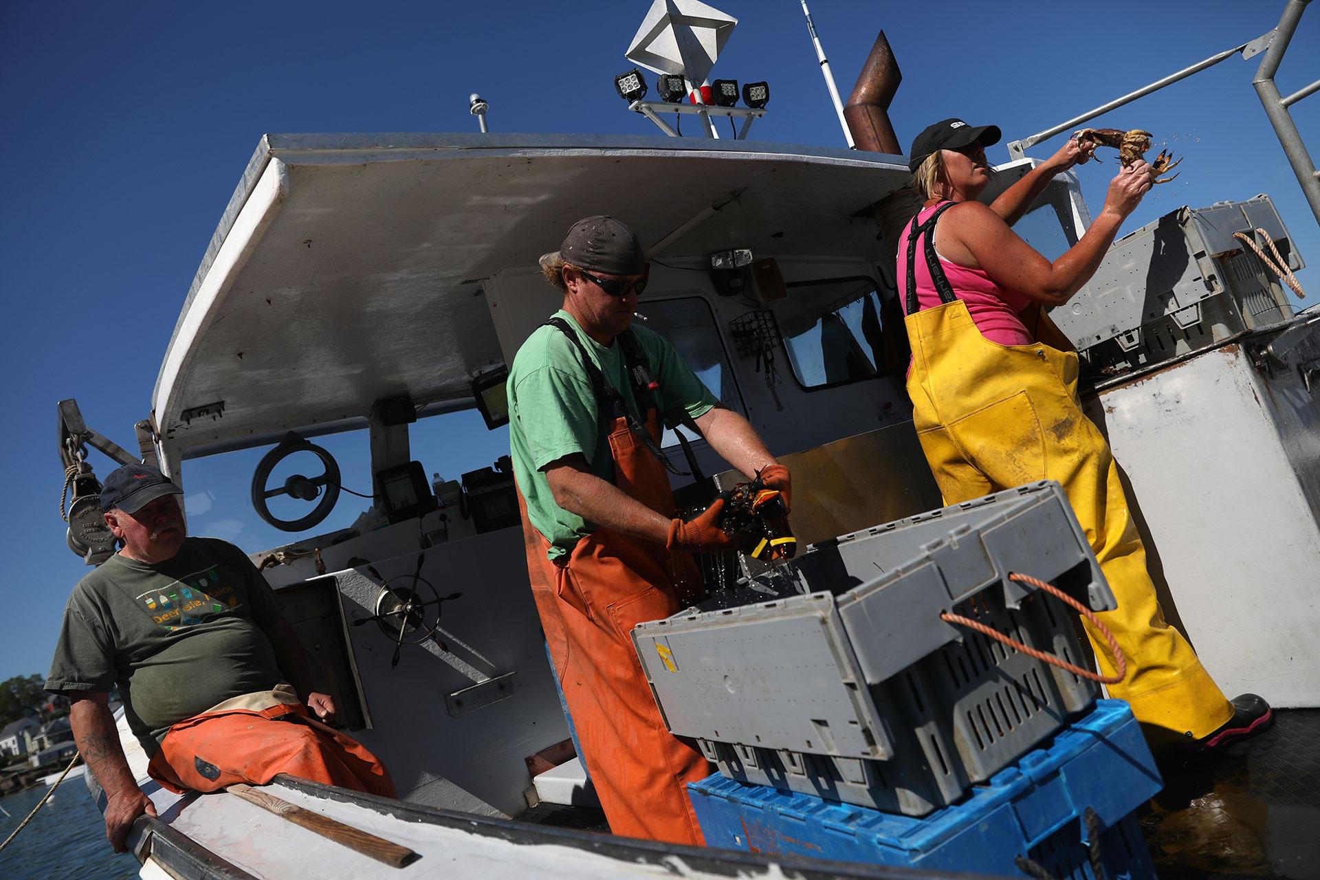 Ocean Shock: In Maine, warming seas set up lobster boom and