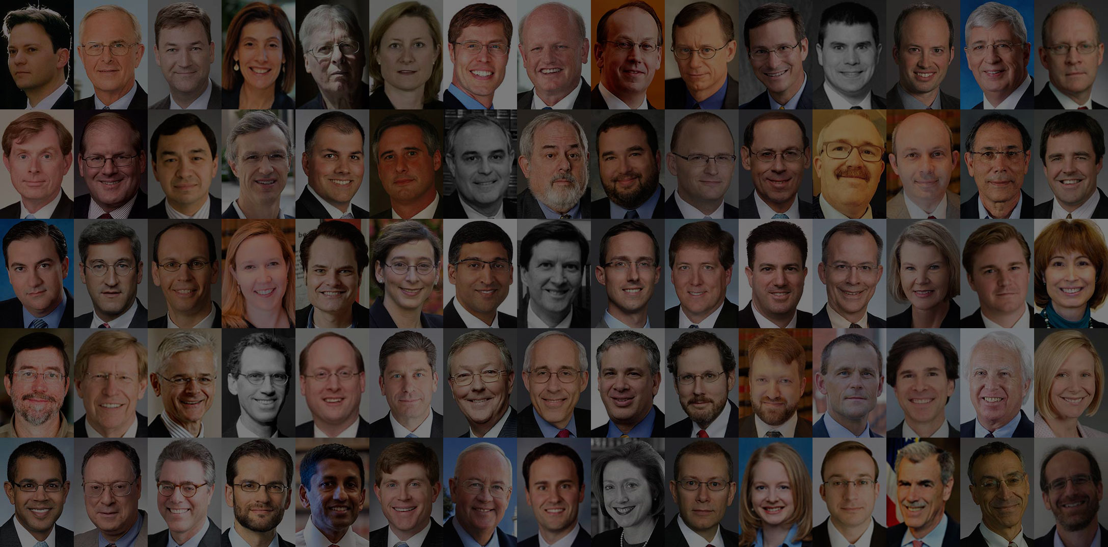 2011 - 2012 Supreme Court Term (Litigator Series)