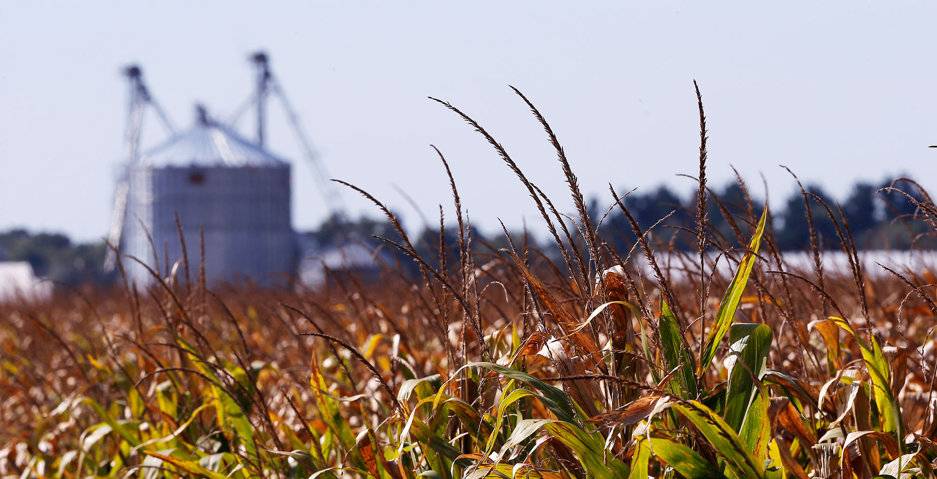 Falling Prices Borrowing Binge Doom Midwest Go Go Farmers