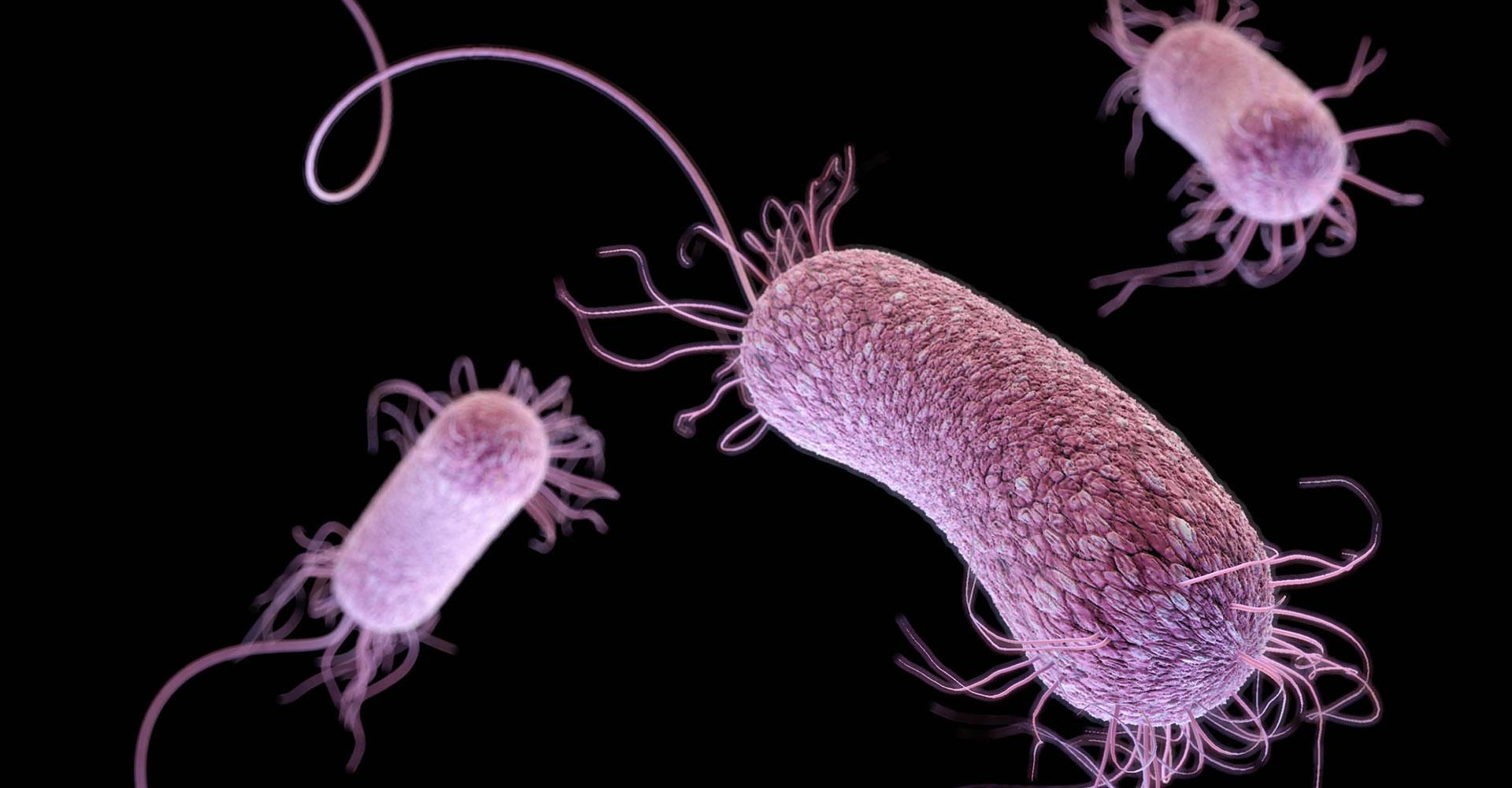 'Superbug' scourge spreads as U.S. fails to track rising ...