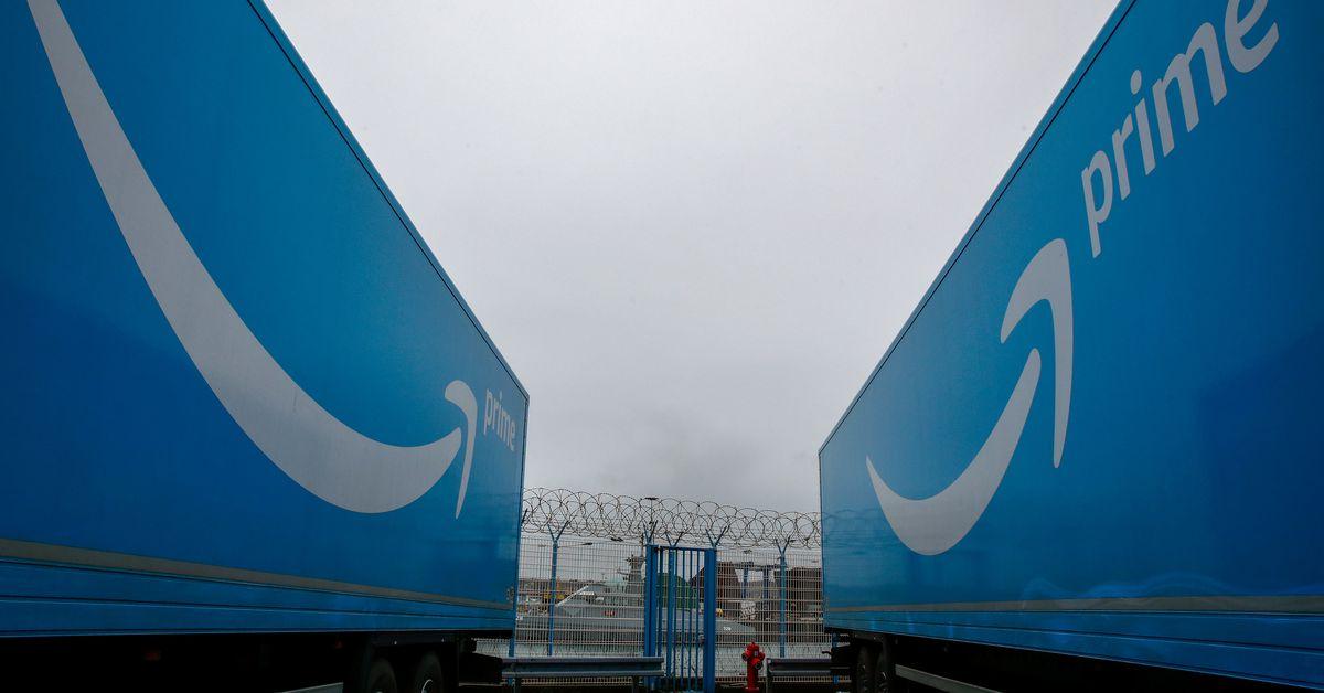 Amazon bulks up transport capability to battle vacation season snarls