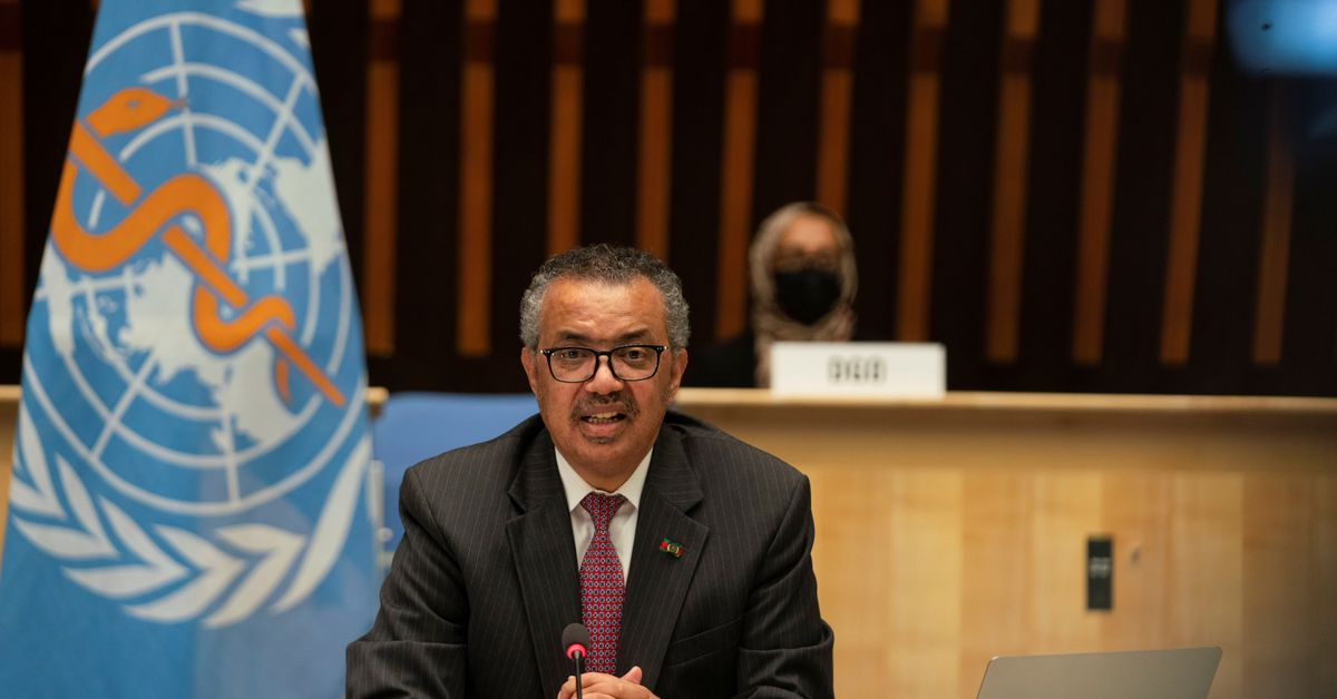 """WHO's Tedros says """"time has come"""" for pandemic treaty"""