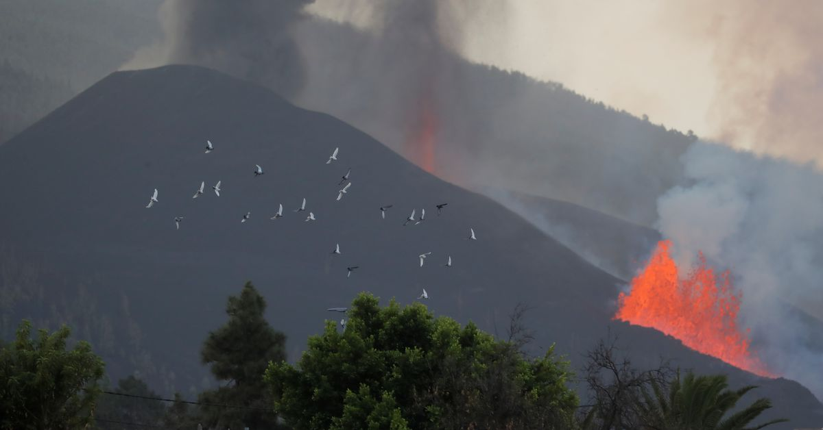 Spain declares volcano hit La Palma as disaster zone - Reuters