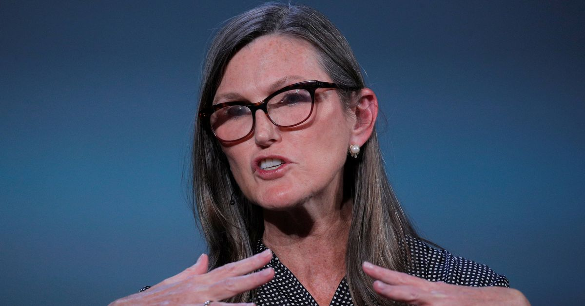 Chinese crackdown on bitcoin another blow to Cathie Wood's ARK ETF