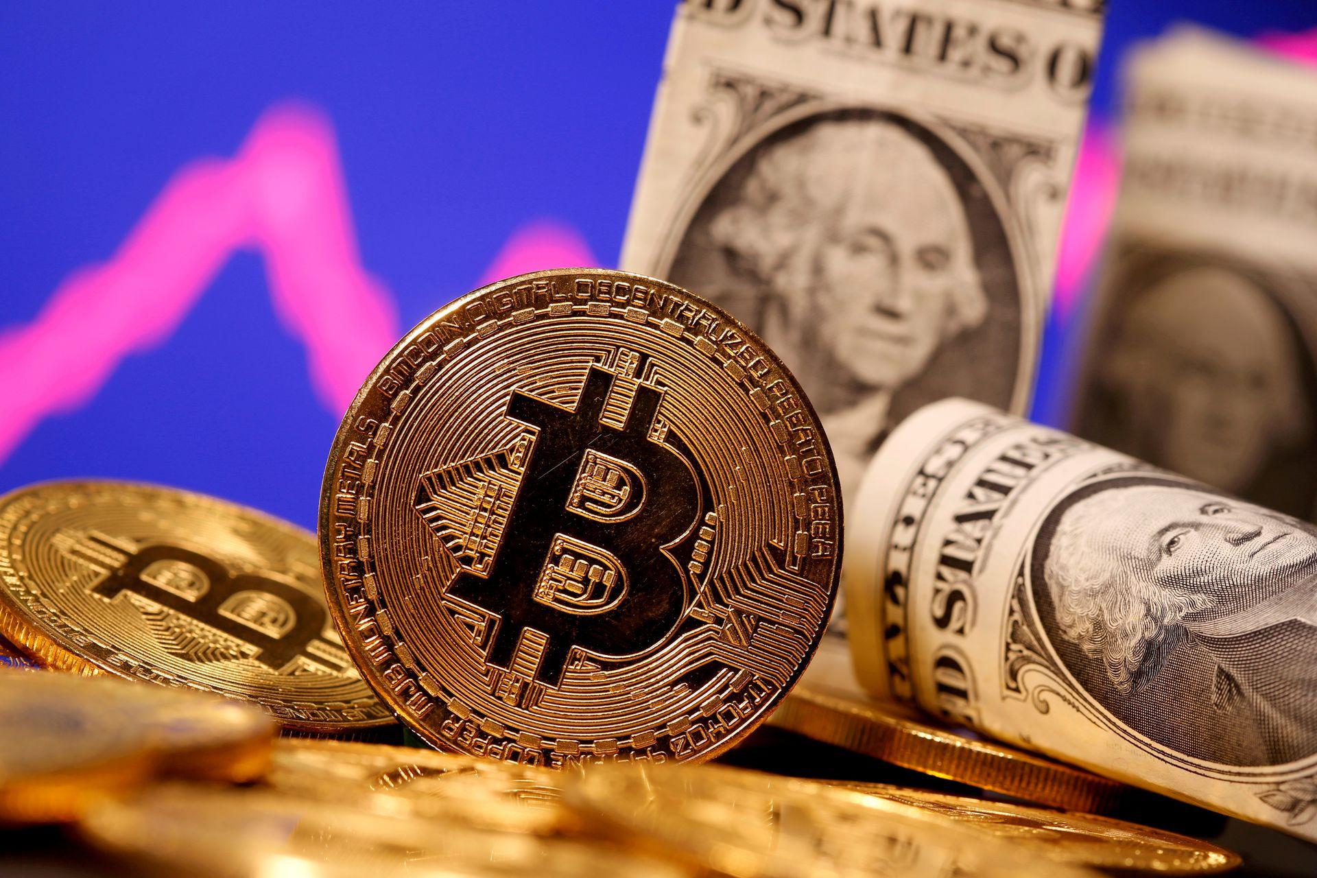bitcoin altcoin trader