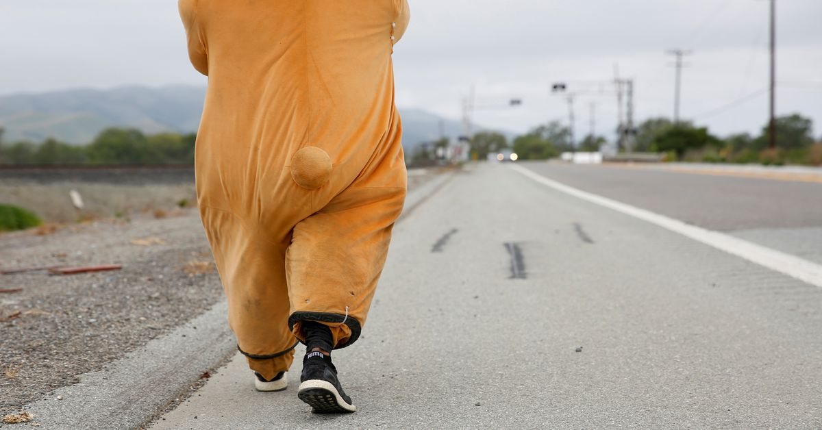 Meet the man in a bear costume walking from Los Angeles to San Francisco