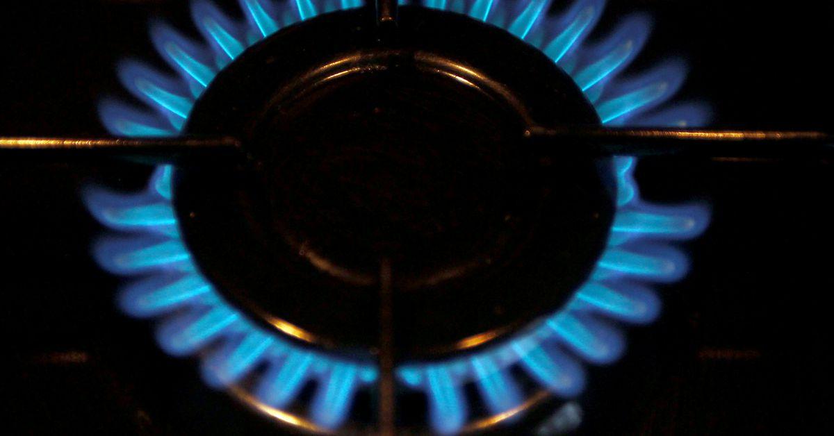 reuters.com - Kate Abnett - EU countries splinter ahead of crisis talks on energy price spike