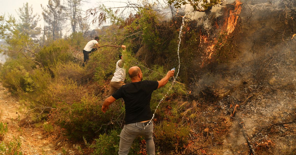 Some wildfires rage on in Turkey, although most have been contained
