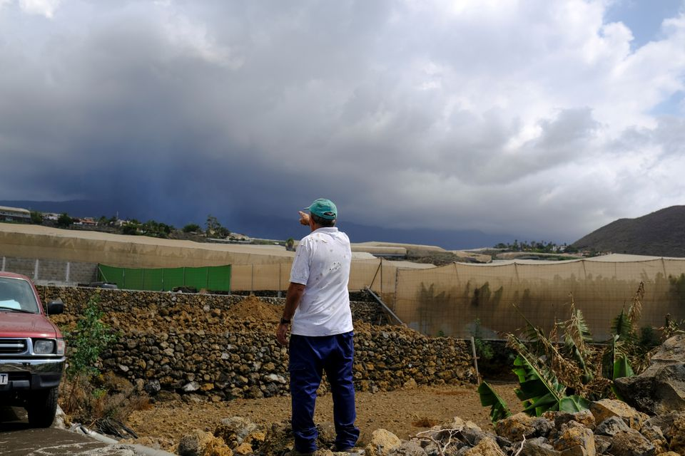 Farmers Suffer Huge Loss as Volcano Ravages La Palma's Banana Crop