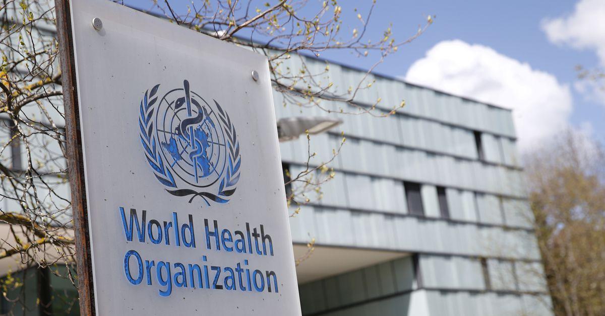 Các nhân viên của WHO đã tham gia vào vụ lạm dụng tình dục ở Congo trong cuộc khủng hoảng Ebola, báo cáo cho biết